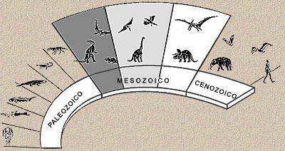 Resultado de imagen de Descripción de la vida en la Tierra